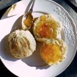 Scones & melon jam
